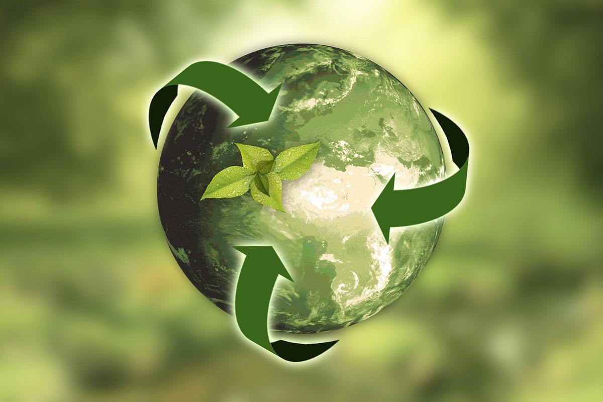 5 Top Tips for Project Sustainability
