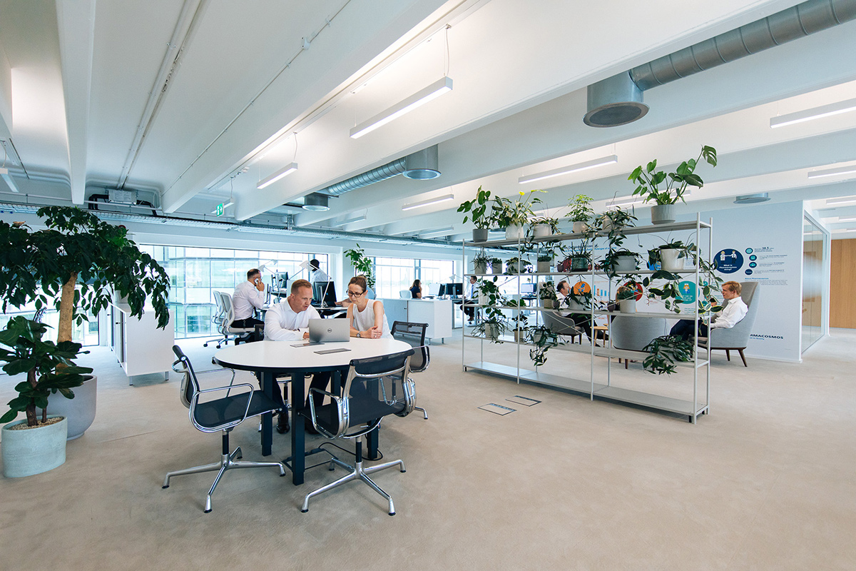 pharmacosmos office fit out